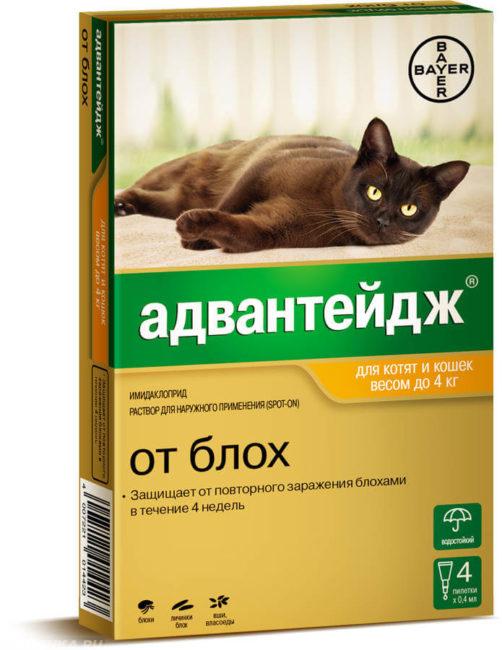 Средство от блох у кошек