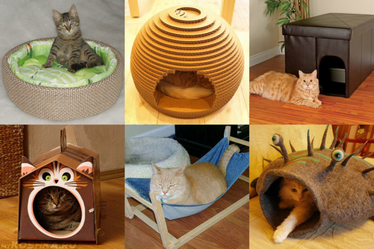 Домики для кошек своими руками поэтапно с