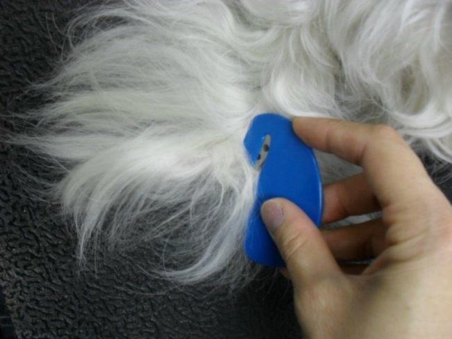 Стандартный колтунорез для удаления колтунов у кошки