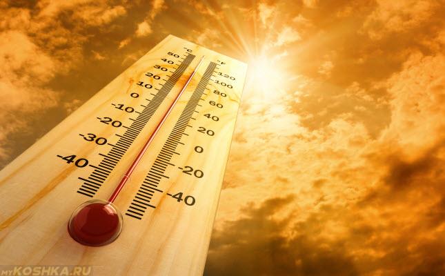 Термометр с высоким показателем температуры