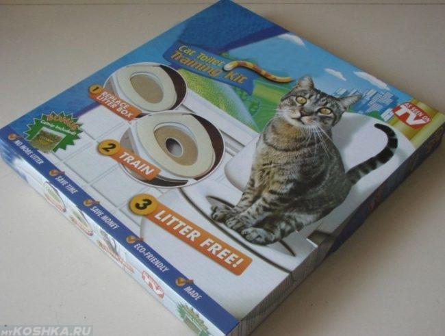 Система для приучения кота к унитазу в домашних условиях
