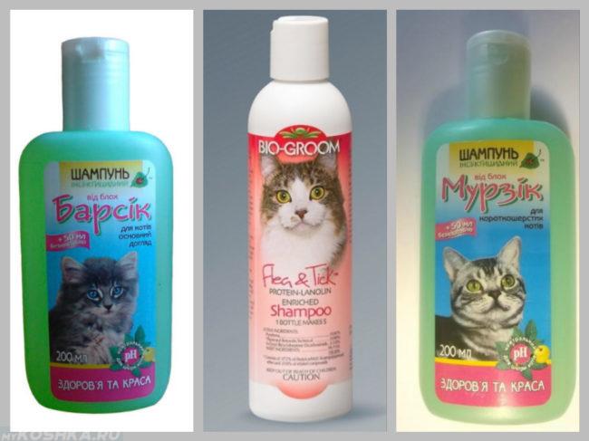 Антиблошиные шампуни для кошек