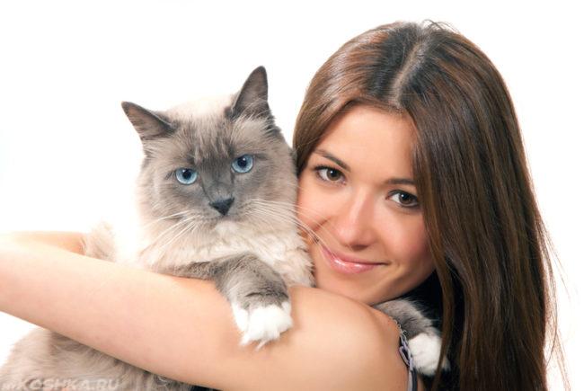 Девушка обнимает двухцветную стерилизованную кошку