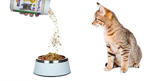 Добавление витаминного комплекса в миску с едой коту