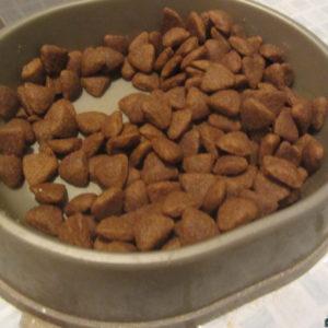 Кошачий сухой корм Пёрфект Фит серии для особо притязательных в миске с едой