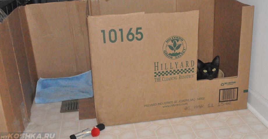 Коробка для беременной кошки своими руками