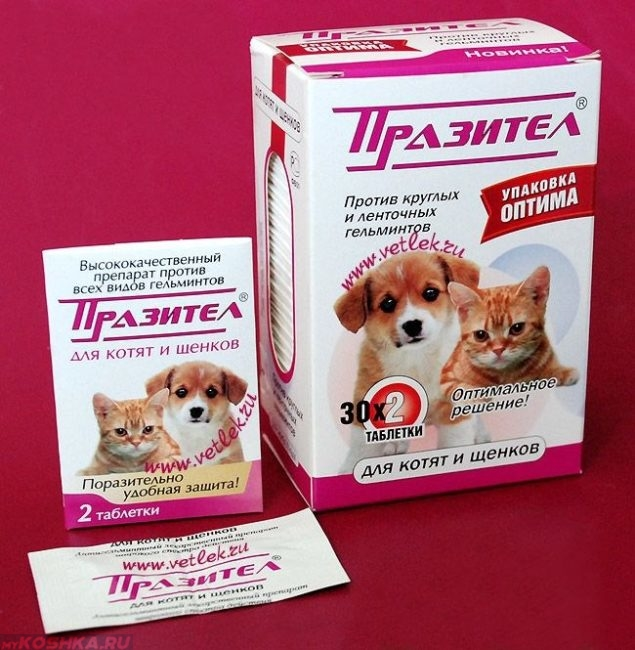 Лекарство от глистов для кошки Празител