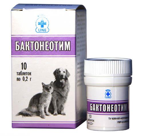 Бактонеотим пробиотик для лечения цистита у кошек
