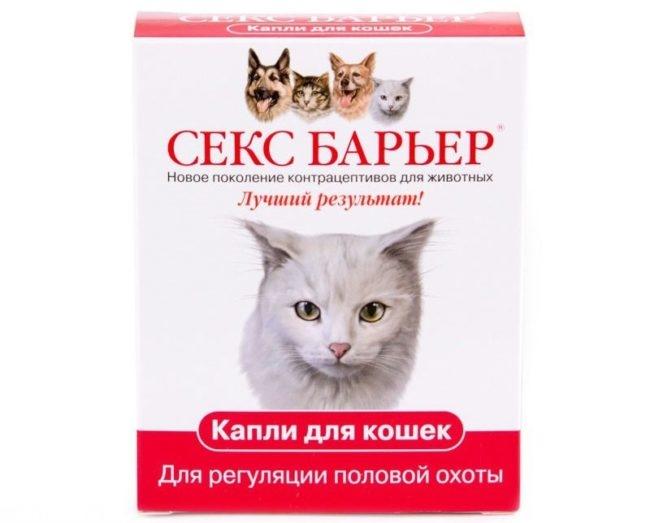 Гормональные таблетки для прекращения течки у кошки