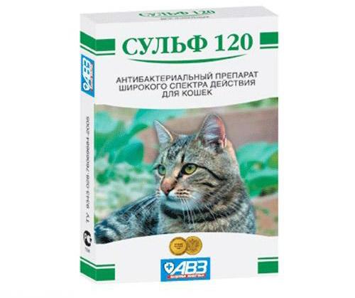 Сульф 120 кошачий антибиотик