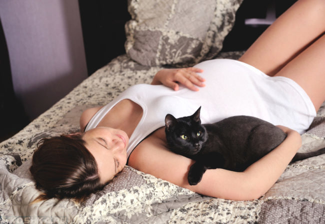 Черная кошка рядом с беременной хозяйкой