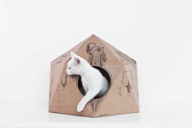 Белая кошка в картонном домике