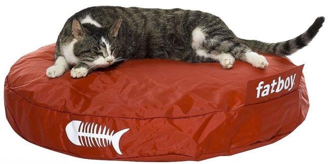 Кот лежит на своей коричневой лежанке