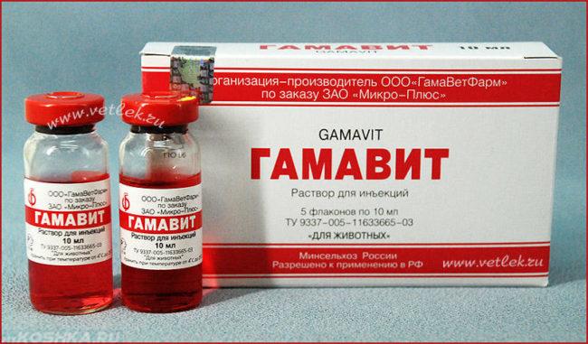Лекарство для кошки гамавит