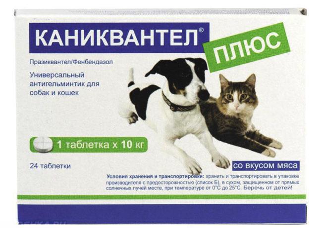 Каниквантел плюс таблетки от глистов у собак и кошек