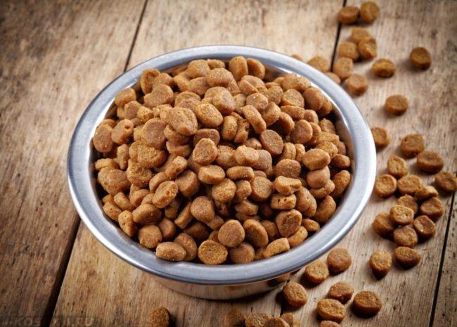 Сухой кошачий корм в миске стоящей на полу