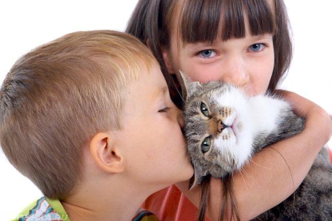 Кошка на руках у девочки стоящей рядом с мальчиком