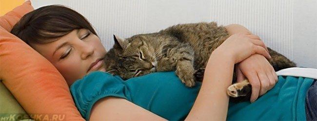 Пушистая кошка лежит на груди женщины