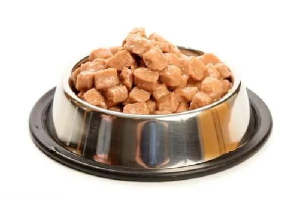 Серебряная миска с кормом