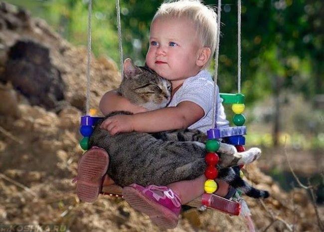 Ребенок в обнимку с котом на качеле