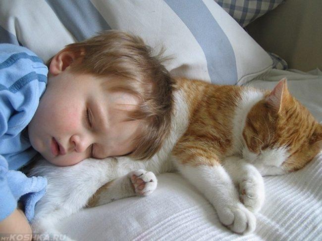 Ребенок и рыжий кот спят рядом