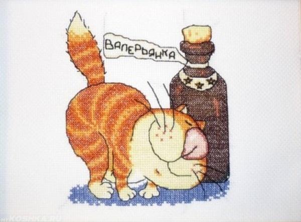 Нарисованный рыжий кот с бутылкой валерьянки