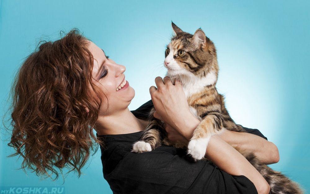 Говарда домашние ыотограыии девушек с кошками для того
