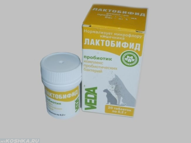 Пробиотик лактобифид для нормализации микрофлоры кишечника