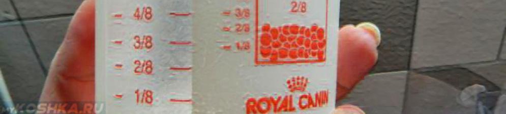 Royal Canin Sphynx - сухой полнорационный корм для