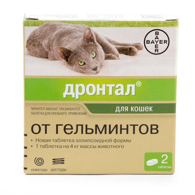 Упаковка препарата дронтал от гельминтов
