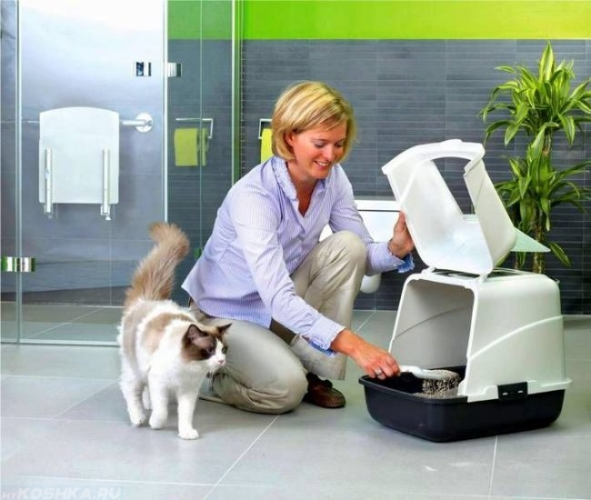 Женщина убирает грязный наполнитель из белого кошачьего лотка