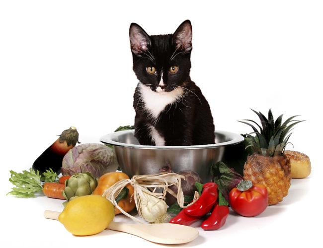 Кошка сидит в миске среди овощей.