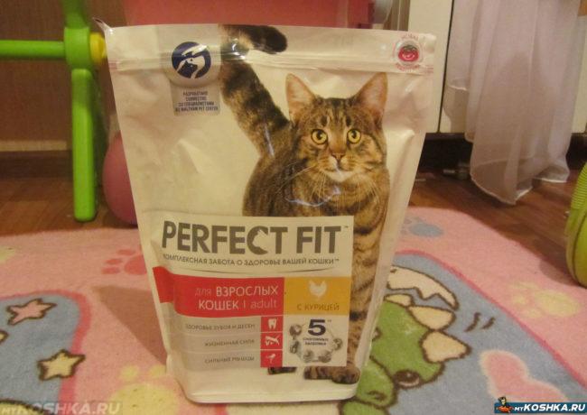 Большая упаковка кошачьего корма