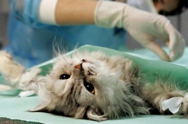 Хирургическое удаление опухоли