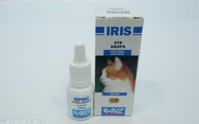 Офтальмологические капли ирис для кошек