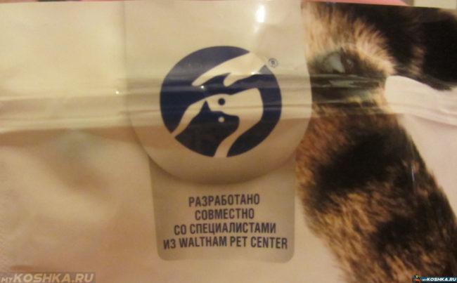 Корм для кошки эконом-класса упаковка