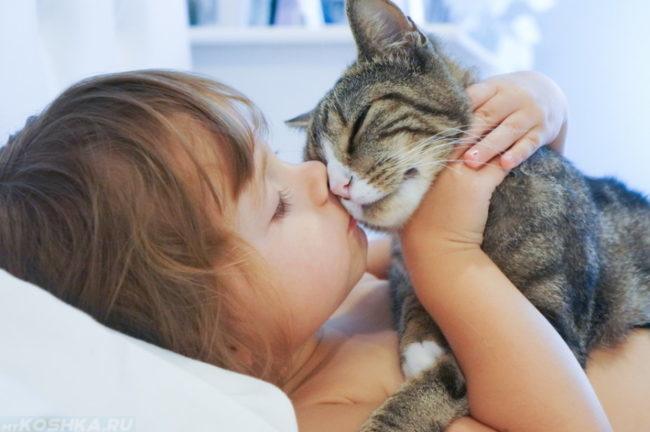 Девочка целует котенка