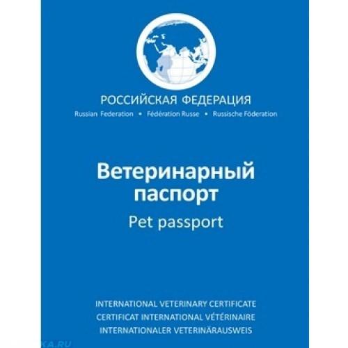 Синяя обложка ветеринарного паспорта