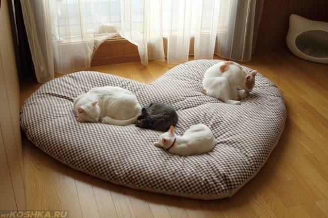 Тёплая подстилка для кошек