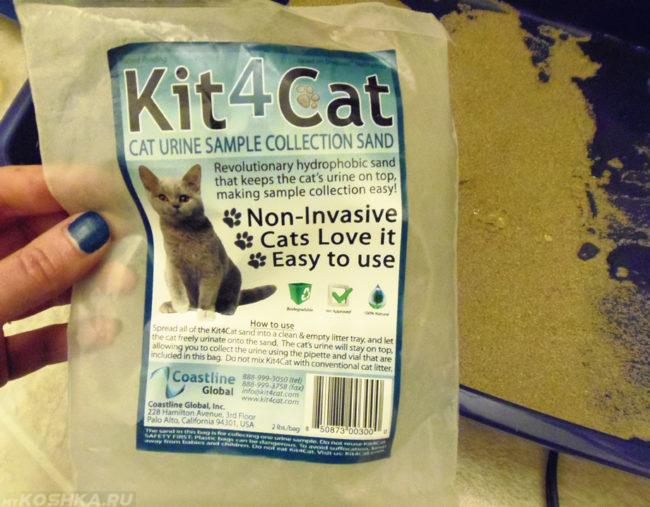 Специальное средство для сбора мочи у котов
