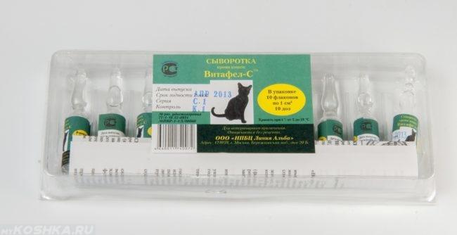 Упаковка препарата Витафел