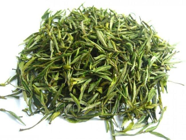 Зелёный листовой чай на белом фоне