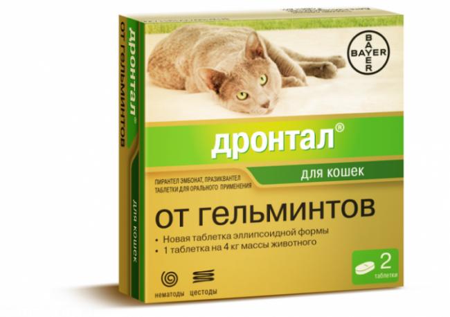 Таблетки дронтал для кошек