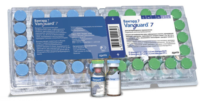 Вакцина вангард против чумки