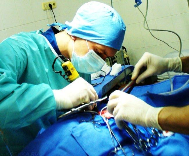Хирургическая операция н ветеринарном столе