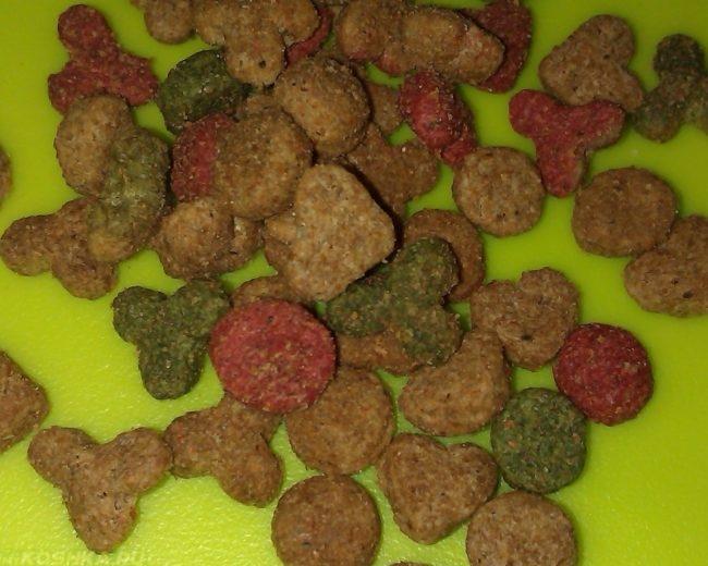 Разноцветный сухой корм для собак