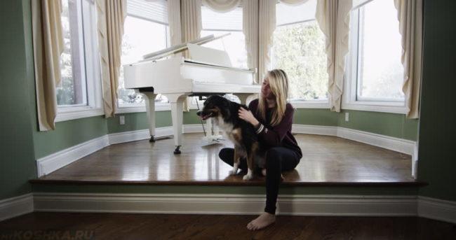 Собака и хозяйка сидящие рядом с пианино