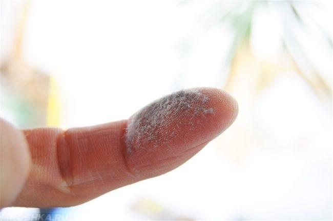 Пыль на пальце на белом фоне