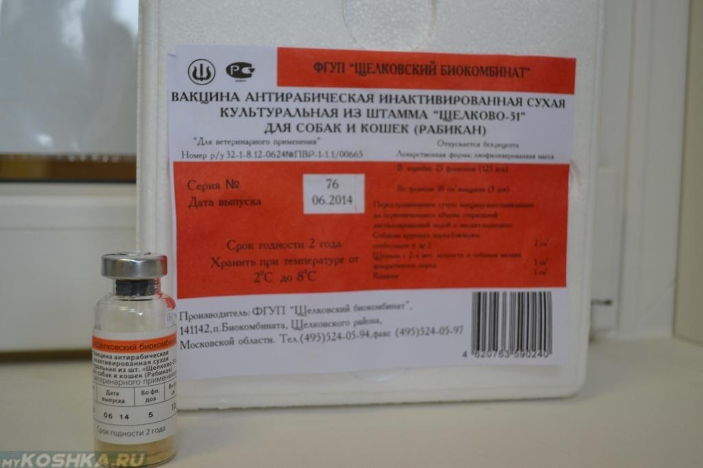Как сделать антирабическую прививку
