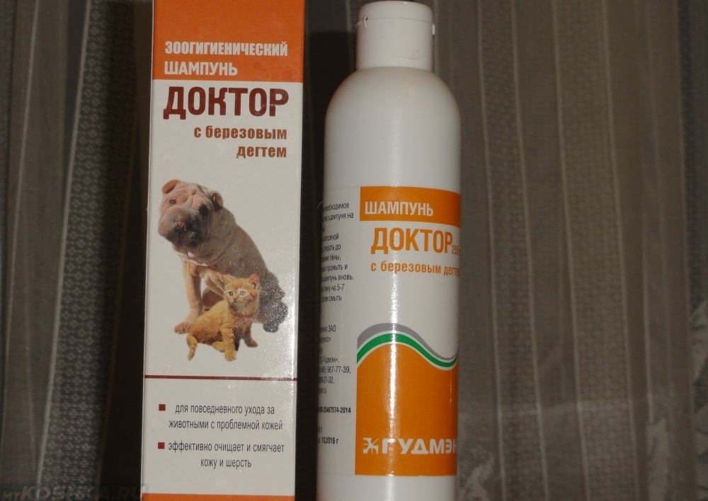 аллергия у собак лечение